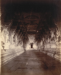 Long colonnade in the Ramalingeshvara Temple, Rameswaram 10032342